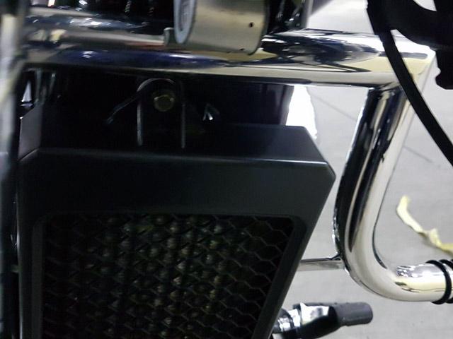 Дуги Honda Shadow (2003р). Спереди.